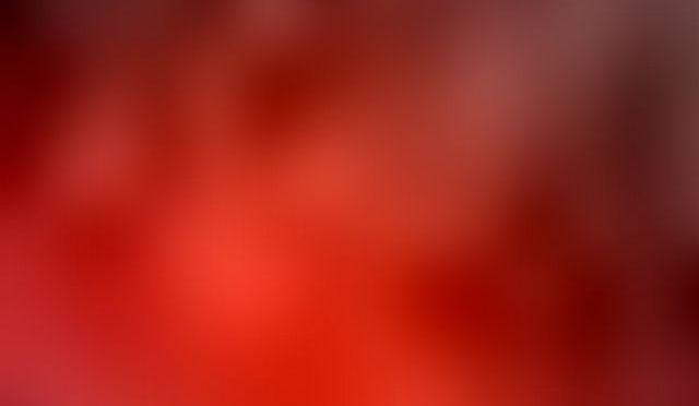 Die Farben des Lebens – Rot