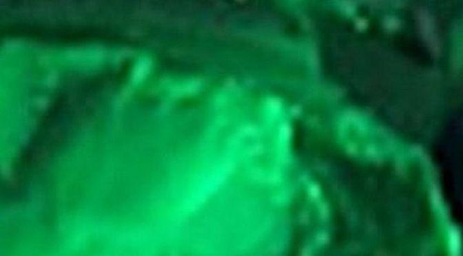 Die Farben des Lebens – Grün